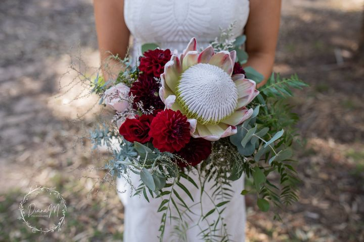 south australian wedding photographer